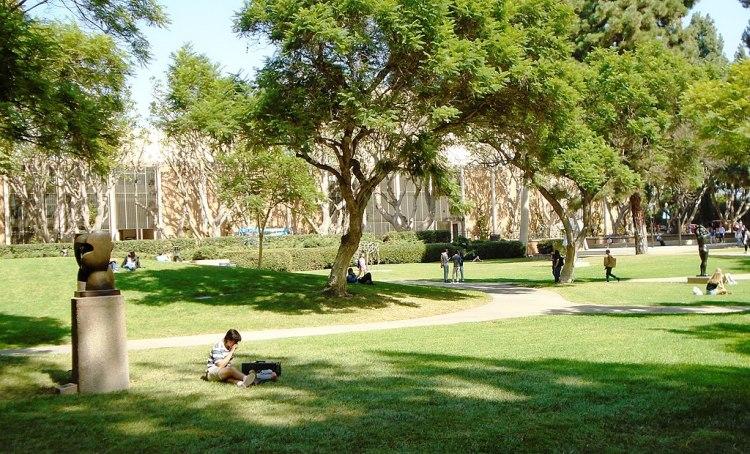walk in the parks around UCLA