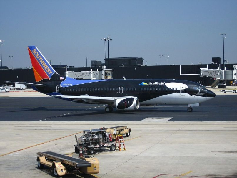 B-737 decorado con Flying Shamu