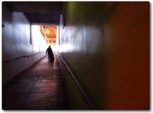 Photo 101: Solitude