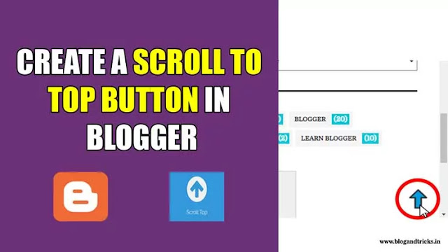 scroll-to-top-button