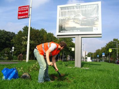 o_boom-voor-billboard1.jpg