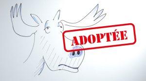 adoption de la loi Elan