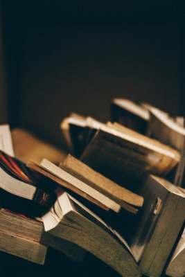LA CHAÎNE DU LIVRE - La Bibliothèque - livres en vrac