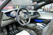 Genève 2013 Subaru 003