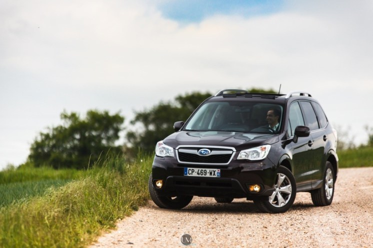 Forester 01