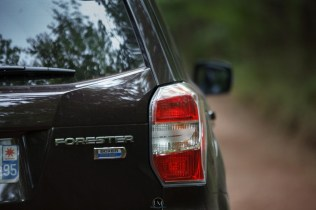 Forester 06