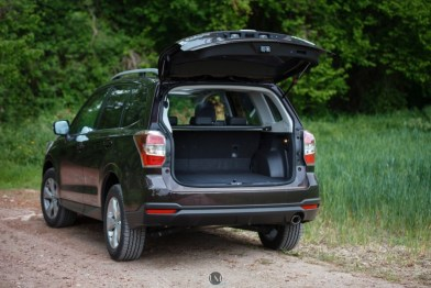 Forester 10