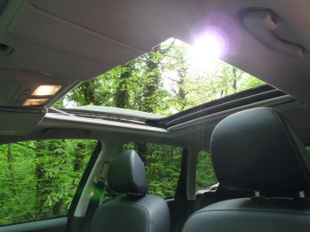 Forester 11