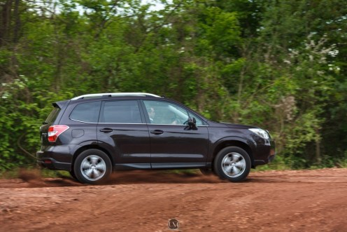 Forester 12