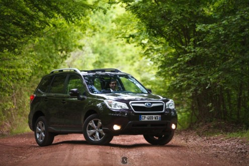 Forester 21