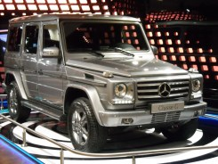 Mercedes Gallery Fascination (17)
