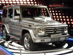 Mercedes Gallery Fascination (17)