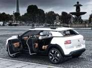 Cactus Concept shooting Paris (5)