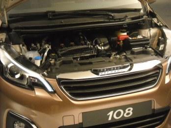 Shooting Peugeot 108 (16)