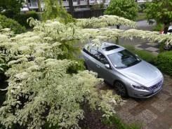 Volvo V60 D6 AWD Plug-in Hybrid 27