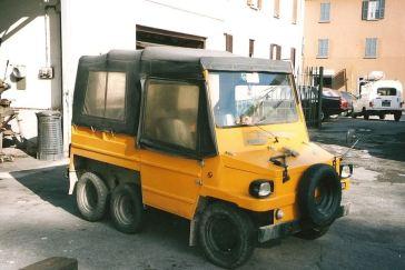Lucertola - 10