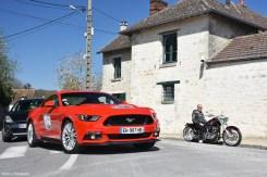 Mustang_3530
