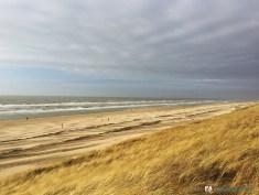 Road Trip aux Pays-Bas - Voyage