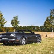 Ford Mustang V8 Convertible 2018