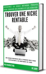 livre pour trouver des niches de blog