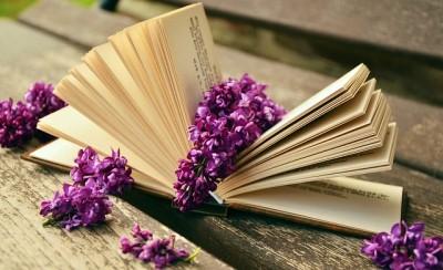 ブログアフィリエイト、質の良い記事を書くためには本を読む
