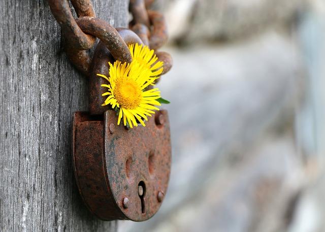 独自SSLが無料で利用できるレンタルサーバー2社