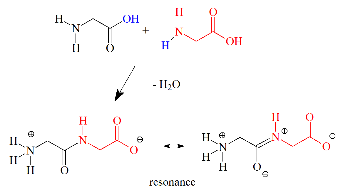 Synthesis Chemical Reaction Diagram, Synthesis, Free
