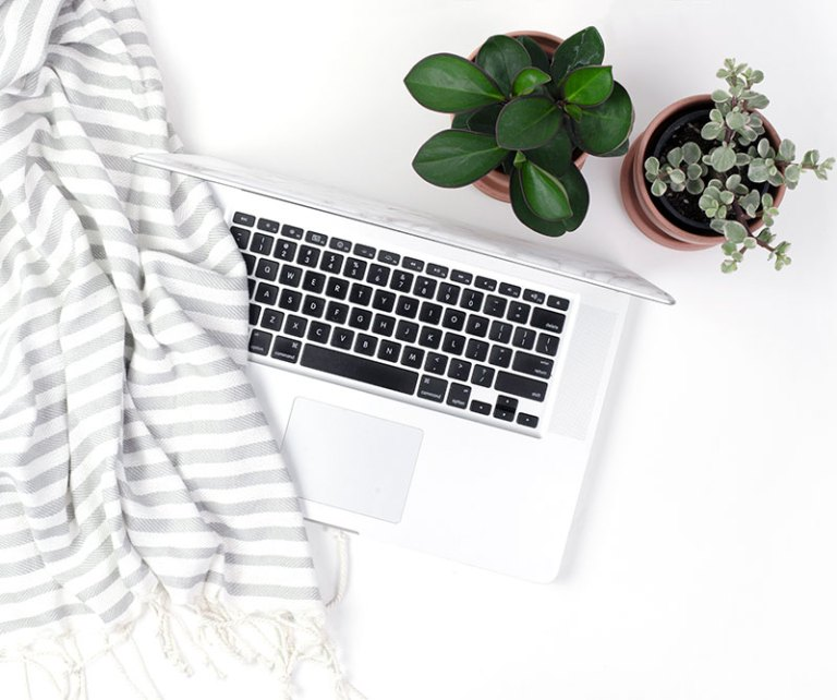laptop with a plant and blanket
