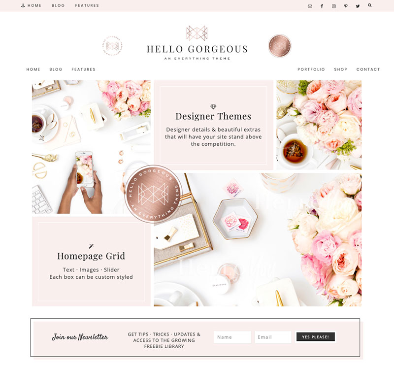 hello gorgeous wordpress theme