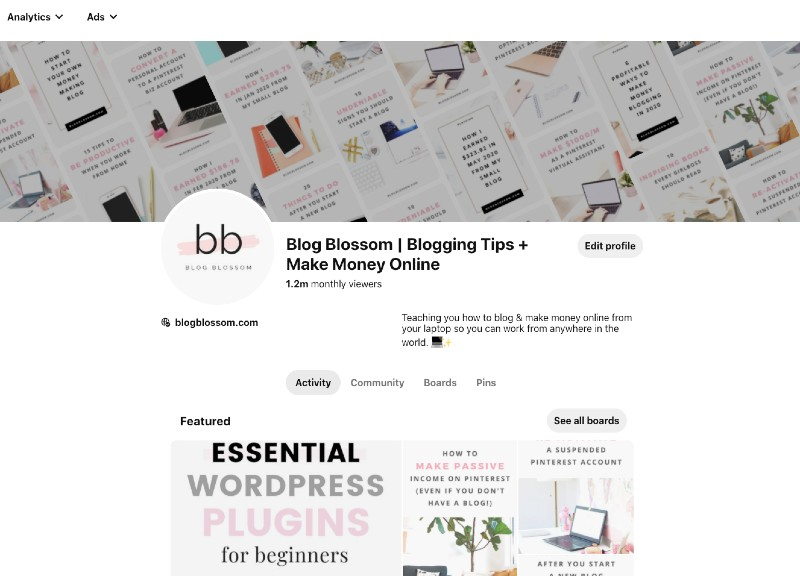 blogblossom 1.2 million monthly views on pinterest