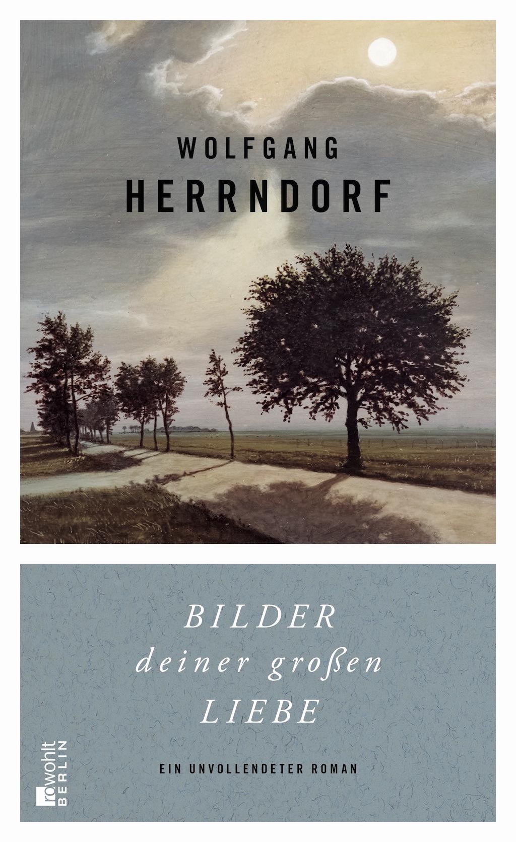 Cover_Herrndorf Bilder deiner grossen Liebe Kopie