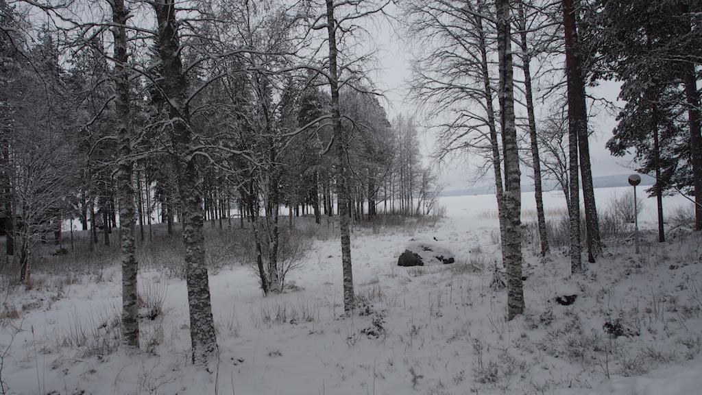 Finnland 2016 ©Michael André Ankermüller