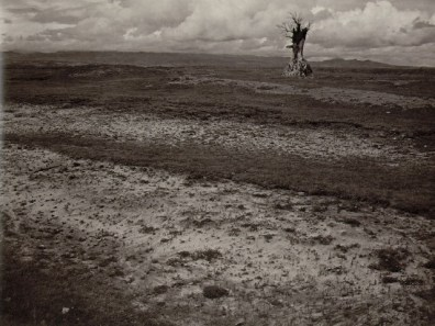 alvarez_bravo_first_solitude