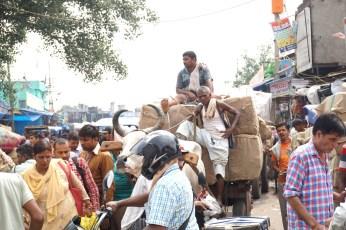 Stillstand auf Indischen Straßen für alle sogar als Fußgänger stehen wir im Stau