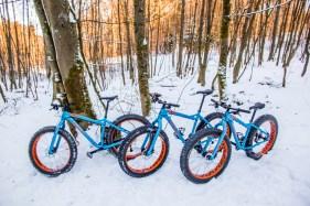 Fatbikes von Taunus-Bike-Fun