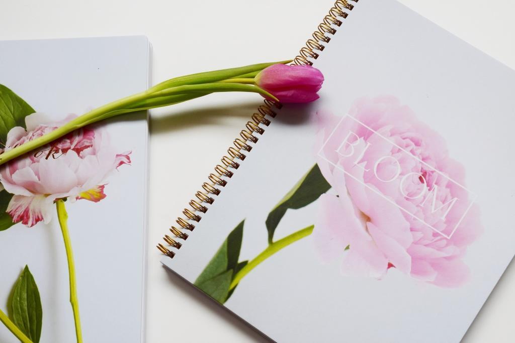 Les 3 clefs d'un blog à succès