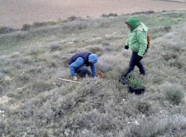 Reforestación 2016 (8)