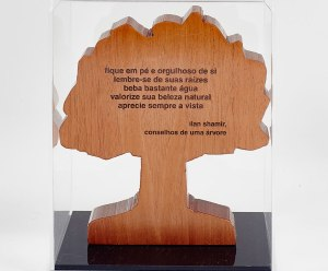 06-tree-of-life-paulo-alves-foto-victor-affaro-3