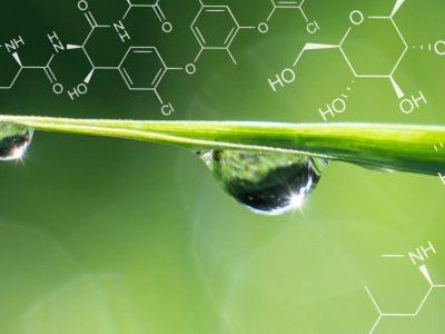 sustentabilidade e engenharia química