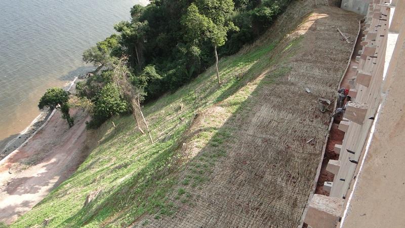 Biomanta em encostas de rios