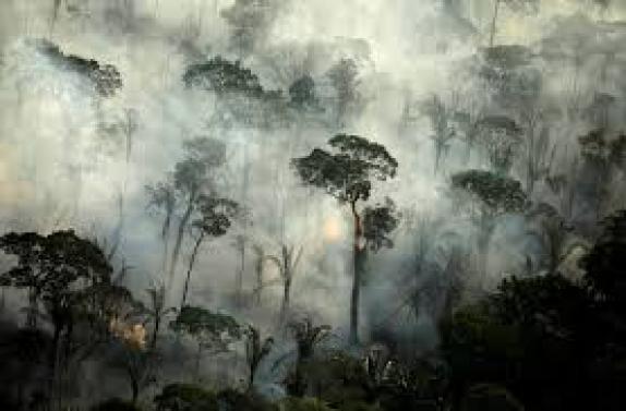 Focos de queimadas na Amazônia em junho foram os maiores para o mês nos  últimos 13 anos, diz Inpe | Natureza | G1