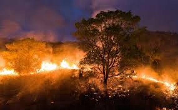 Incêndios no Pantanal aumentam 210% em 2020, diz Inpe - ISTOÉ Independente