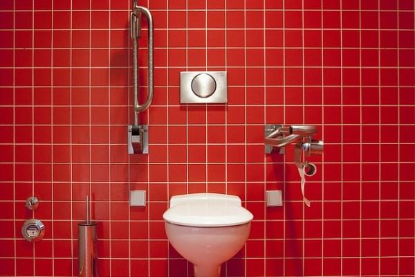 cum alegi vasul de wc