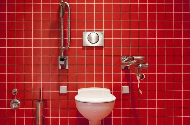 Criterii esențiale pentru alegerea vasului wc
