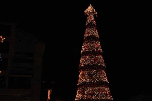 Christmas 173