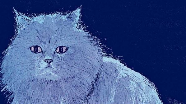 Novedades ECC Julio 2020 gatos louvre