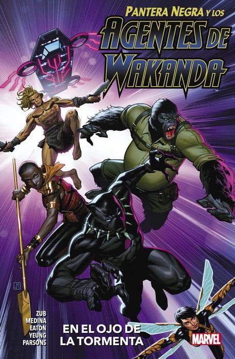 Pantera Negra y los agentes de wakanda
