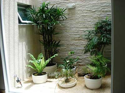 Como Construir um Jardim de Inverno na Sala Quarto Casa
