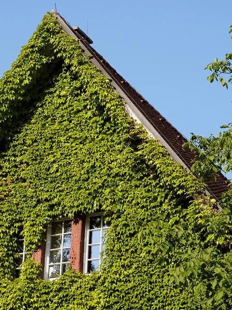 Guvernul Romaniei Lansam Programul Casa Verde 2016 (In Concept Nou)