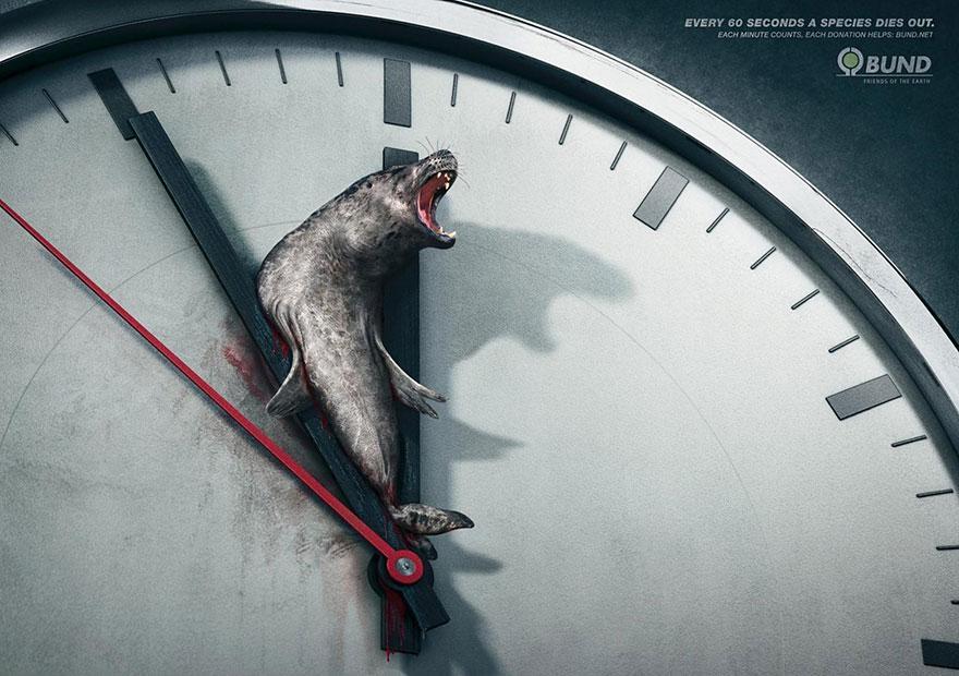 Cada 60 segundos una especie muere. Cada minuto cuenta